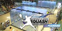 Campionati del Mondo a Squadre Maschili 2013